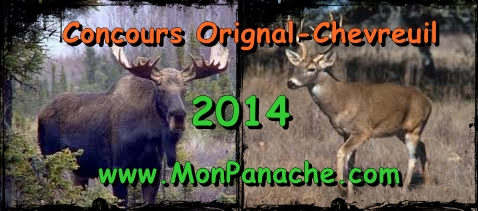 concours chasse orignal chevreuil